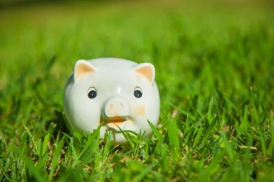 Piggy bank in the grass.